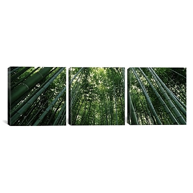 East Urban Home 'Bamboo' Vertical Photographic Print on Canvas; 12'' H x 36'' W x 1.5'' D