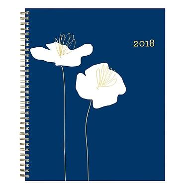 2018 Snow & Graham for Blue Sky 8-1/2