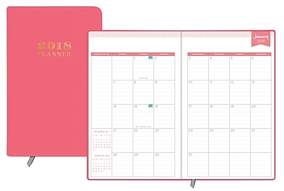 photograph about Day Designer Planner identify 2018 Working day Designer for Blue Sky 5\