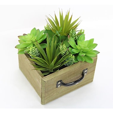 Varick Gallery Artificial Potted Desktop Succulent Plant in Planter