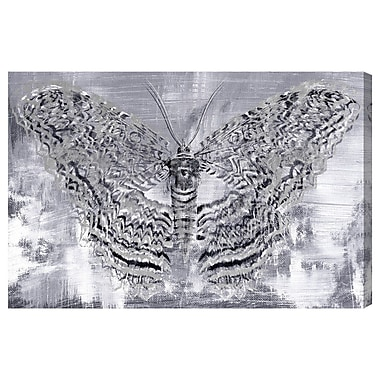 Bloomsbury Market 'Silver Winged Butterfly' Painting Print on Canvas; 24'' H x 36'' W x 1.5'' D
