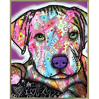 East Urban Home 'Baby Pit' Graphic Art Print; Gold Metal Framed
