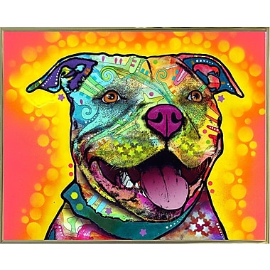 East Urban Home 'Dewey Pit Bull' Graphic Art Print; Gold Metal Framed