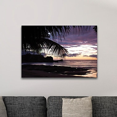 Highland Dunes 'Sunset Palms' Photographic Print; Plexiglass