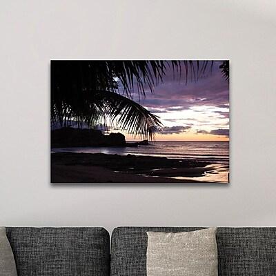 Highland Dunes 'Sunset Palms' Photographic Print; Metal