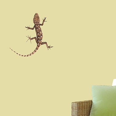 SweetumsWallDecals Real Life Lizard Wall Decal; 12'' H x 12'' W