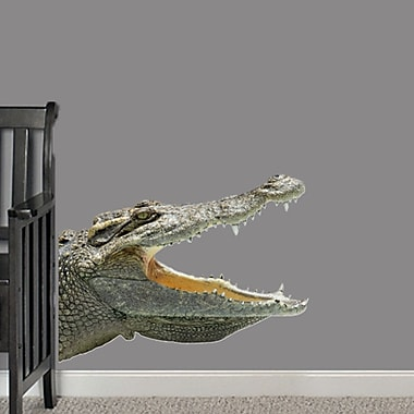 SweetumsWallDecals Real Life Alligator Wall Decal; 24'' H x 32'' W