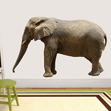 SweetumsWallDecals Real Life Elephant Wall Decal; 36'' H x 56'' W