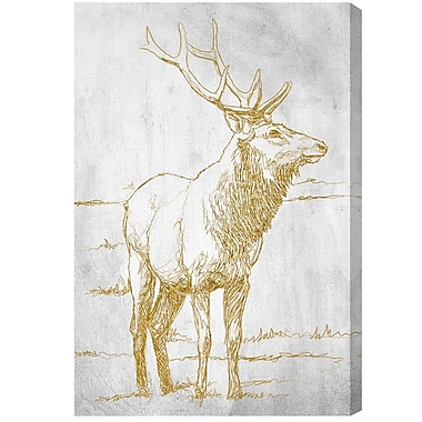 Union Rustic 'Majestic Antlers' Graphic Art on Canvas; 60'' H x 40'' W x 2'' D