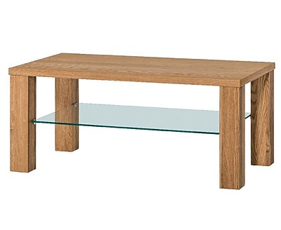 Union Rustic Myria Coffee Table w/ Magazine Rack