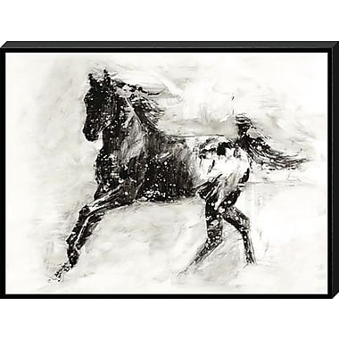 Union Rustic 'Appaloosa II' Graphic Art Print