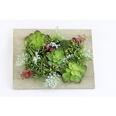 Ebern Designs Artificial Hanging Succulent Plant w/ Rustic Wooden Picture Frame