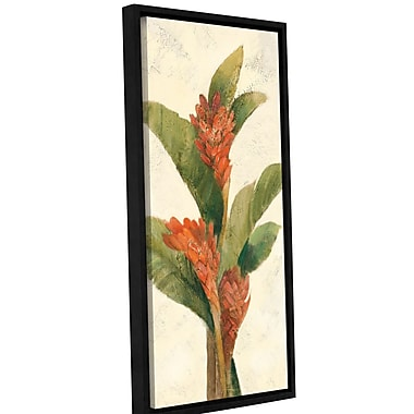 Bay Isle Home Ginger Blossom on White by Albena Hristova Framed Painting Print