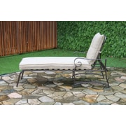 Ophelia & Co. Tony Outdoor Garden Chaise Lounge (Set of 2)