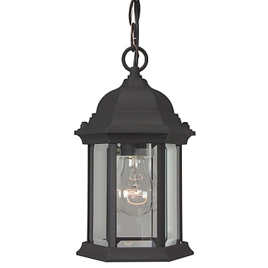 Charlton Home Oakhill 1-Light Hanging Lantern