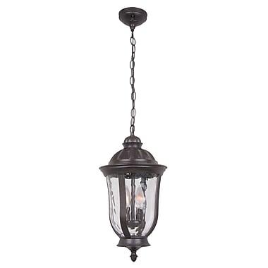 Charlton Home Oakhill 2-Light Outdoor Hanging Lantern