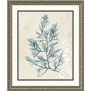 Highland Dunes 'Teal Seaweed I' Framed Print on Wood