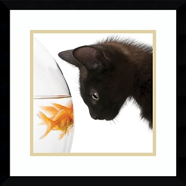 Latitude Run 'Penny for Your Thoughts Cat' Framed Photographic Print on Wood