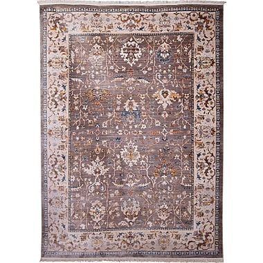Charlton Home Irvington Brown Area Rug; 3'3'' x 5'2''