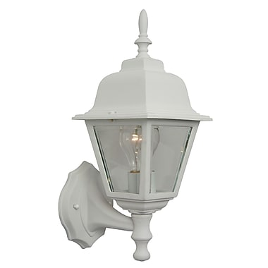 Charlton Home Overbey 1-Light Outdoor Sconce; Matte White
