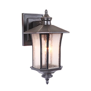 Darby Home Co Searsmont 1-Light Outdoor Wall Lantern; 17.67'' H x 9'' W x 10.8'' D