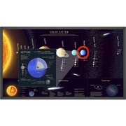 NEC Display 65 inch Large Format Touch Display (E651 T) by