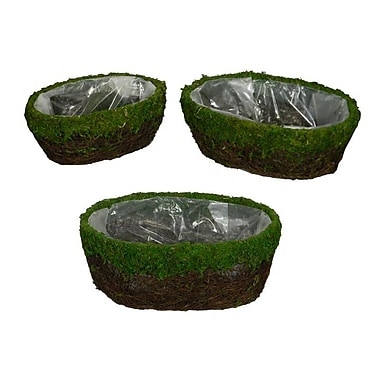 Loon Peak Cottage Moss/Salim 3 Piece Basket Set