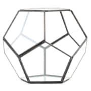 Koyal Wholesale Pentagon Geometric Table Glass Terrarium; Black