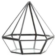 Koyal Wholesale Diamond Geometric Table Glass Terrarium; Black