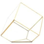 Koyal Wholesale Slanted Cube Geometric Table Glass Terrarium; Gold
