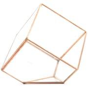Koyal Wholesale Slanted Cube Geometric Table Glass Terrarium; Rose Gold/Copper