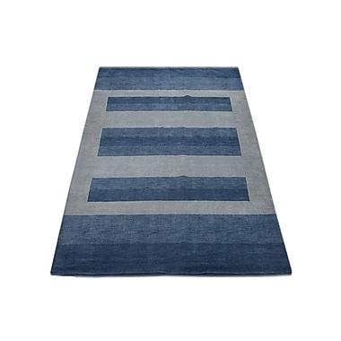 Latitude Run Ry Hand Knotted Loom Wool Light Blue Area Rug; 8' x 10'
