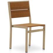 Orren Ellis Katreesha Modern Patio Dining Chair; Gloss Silver/Antique Mahogany