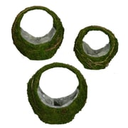 Loon Peak Moss 3 Piece Basket Set