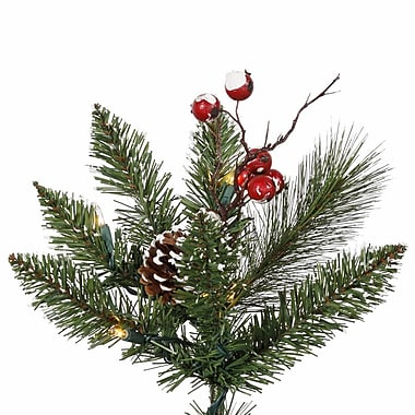 The Holiday Aisle Snow Tipped Elegance 2' Green Pine Artificial Christmas Tree w/ 35 Colored Lights