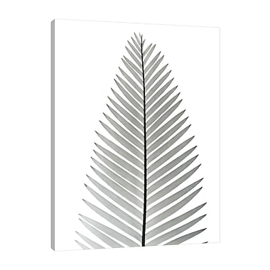 August Grove 'Tropical Fern II' Graphic Art Print on Wrapped Canvas; 32'' H x 24'' W