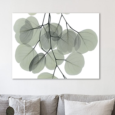 August Grove 'Descending Eucalyptus 5' Graphic Art Print on Wrapped Canvas; 36'' H x 48'' W