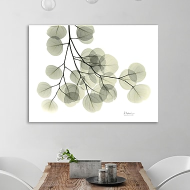 August Grove 'Eucalyptus - L257' Graphic Art Print on Wrapped Canvas; 24'' H x 32'' W