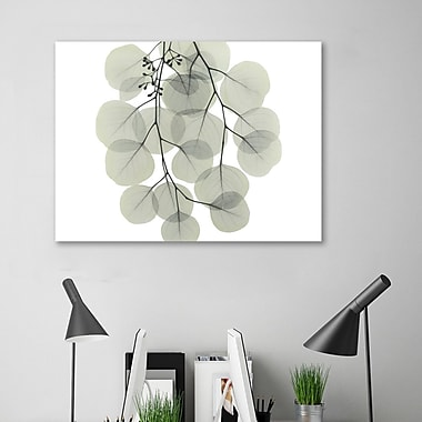 August Grove 'Descending Eucalyptus 4' Graphic Art Print on Wrapped Canvas; 12'' H x 16'' W