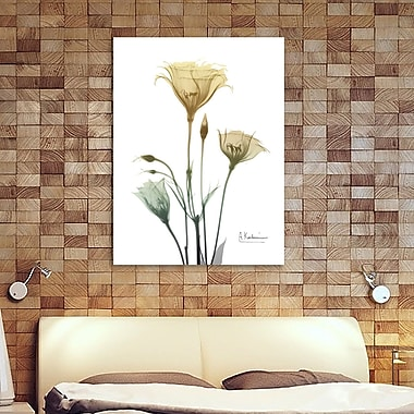 Ebern Designs 'Ocre Bloom 1' Graphic Art Print on Wrapped Canvas; 20'' H x 15'' W