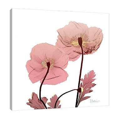 Ebern Designs 'Golden Blush 2' Graphic Art Print on Wrapped Canvas; 24'' H x 24'' W