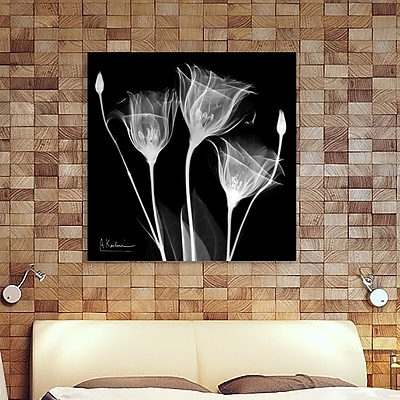 Ebern Designs 'Gentian White' Graphic Art Print on Wrapped Canvas; 30'' H x 30'' W