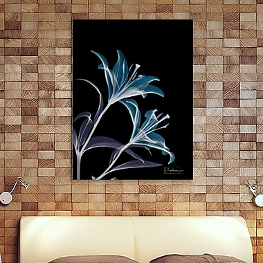 Ebern Designs 'Lily L145' Graphic Art Print on Wrapped Canvas; 32'' H x 24'' W