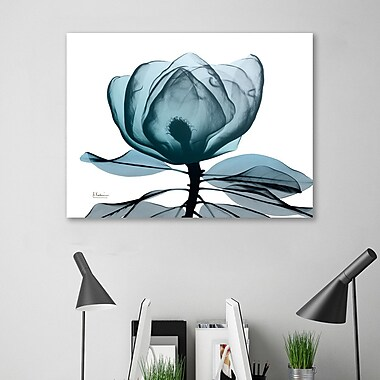 Ebern Designs 'Midnight Magnolia 1' Graphic Art Print on Wrapped Canvas; 36'' H x 48'' W