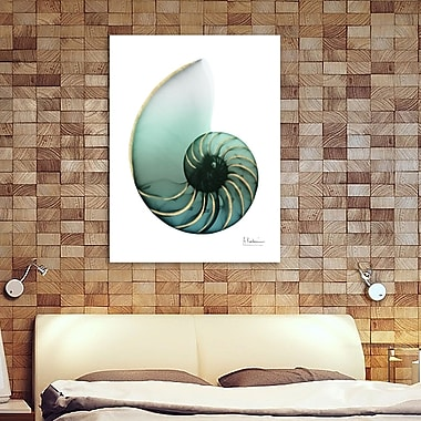 Highland Dunes 'Shimmering Snail 4' Graphic Art Print on Wrapped Canvas; 16'' H x 12'' W