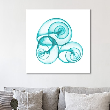 Highland Dunes 'Turquoise Sky Snails' Graphic Art Print on Wrapped Canvas; 24'' H x 24'' W