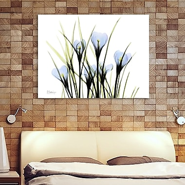 Latitude Run 'Bunched Crocus C38' Graphic Art Print on Wrapped Canvas; 30'' H x 40'' W