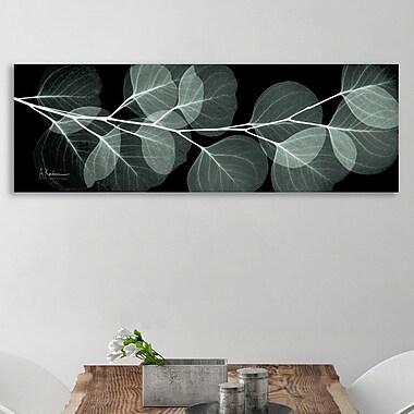 Latitude Run 'Eucalyptus Night 2' Graphic Art Print on Wrapped Canvas; 15'' H x 45'' W