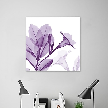 Latitude Run 'Lavendar Mandelilla' Graphic Art Print on Wrapped Canvas; 12'' H x 12'' W
