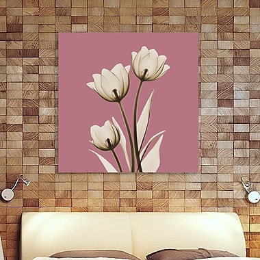 Latitude Run 'Pink Luster Tulips_C68' Graphic Art Print on Wrapped Canvas; 12'' H x 12'' W